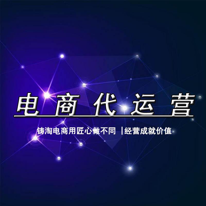 杭州铸淘 杭州代运营 网店托管