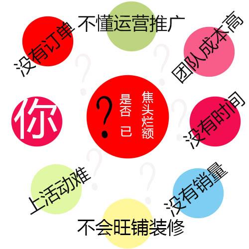 杭州铸淘网络科技有限公司 代运营 天猫淘宝代运营